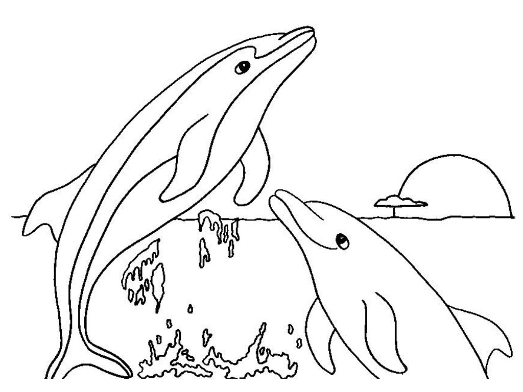 Vacancy Dolphin Animal Coloring Pages Free Printable Coloring