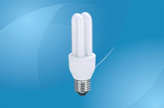 Circular Fluorescent Light Bulb