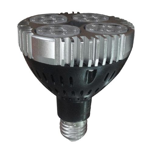 Medium Base Light Bulb