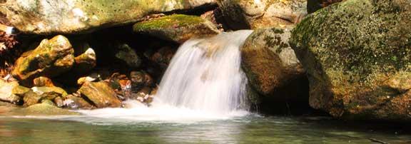 Backyard Waterfalls Ponds