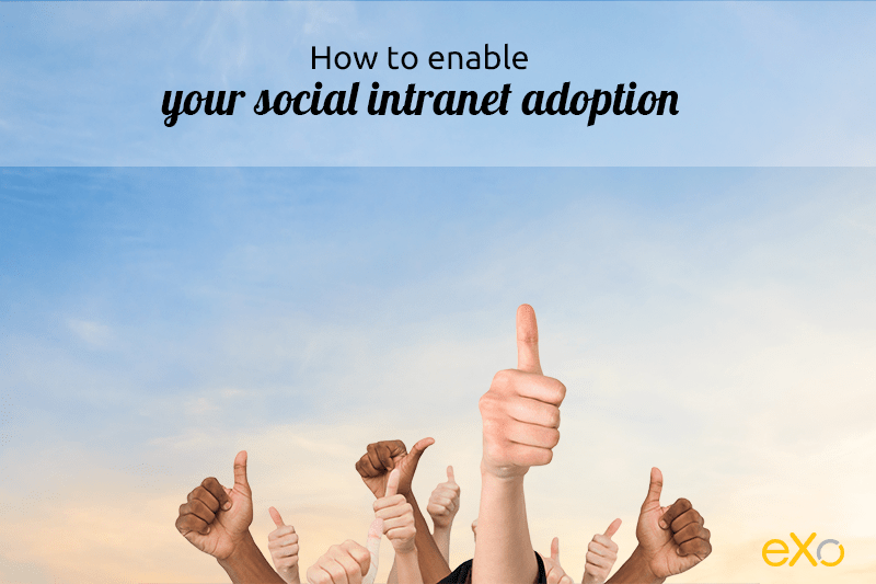 social intranet launch