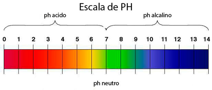 Scientific Balance Scale