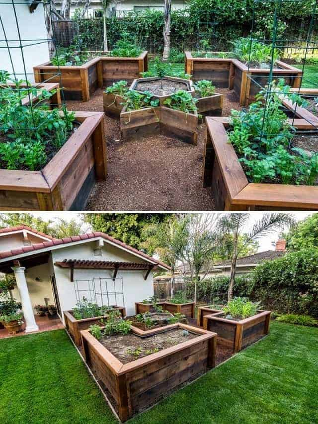 Amazing Above Ground Garden