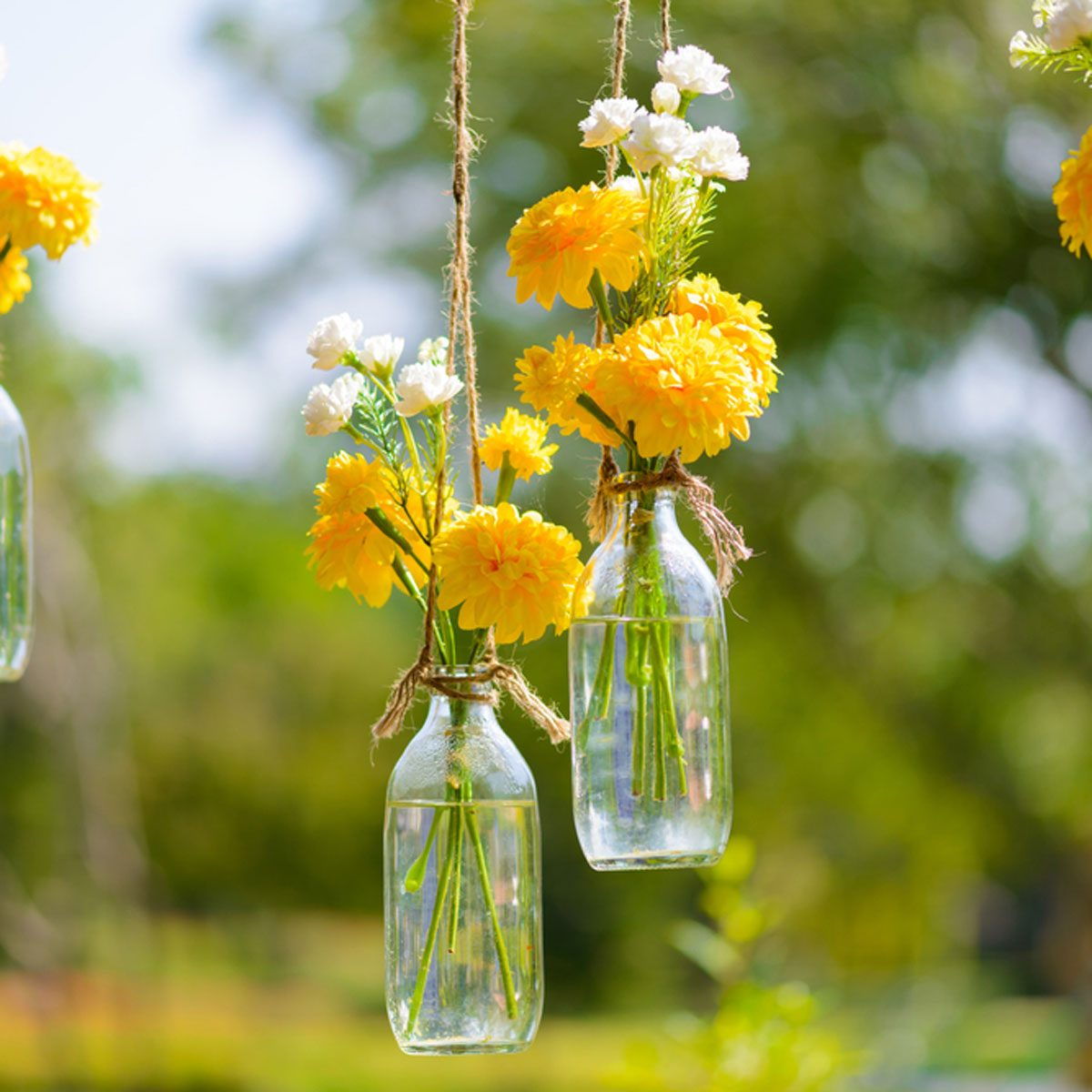 15 Creative Ways To Hang A Plant Outdoors The Family