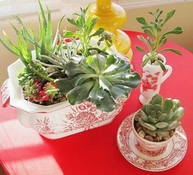 Terracotta Plant Pots Uk