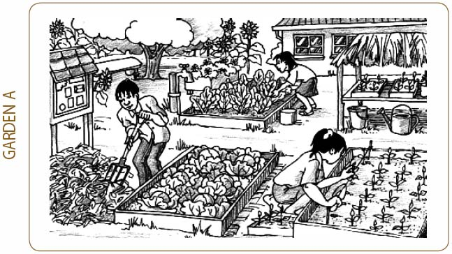 Setting up and running a school garden - Teaching ToolKit