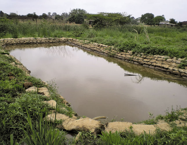 Farm Pond Meaning Hindi