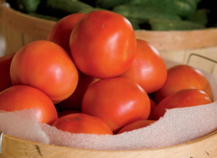 Florida Agriculture S Top Crops Farm Flavor