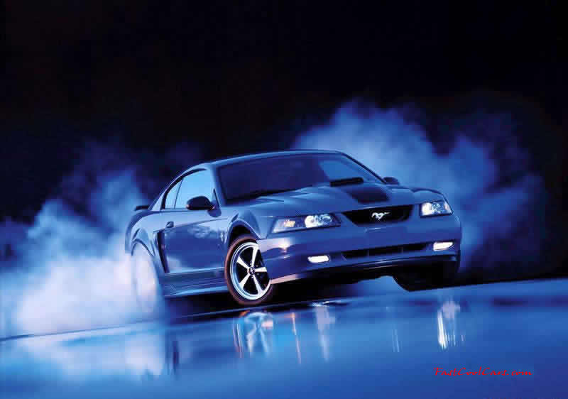 2004 Gt Modified Mustang