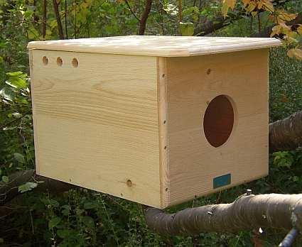 Barn Owl House, Barn Owl Nesting Box, Quality Owl Nest ...