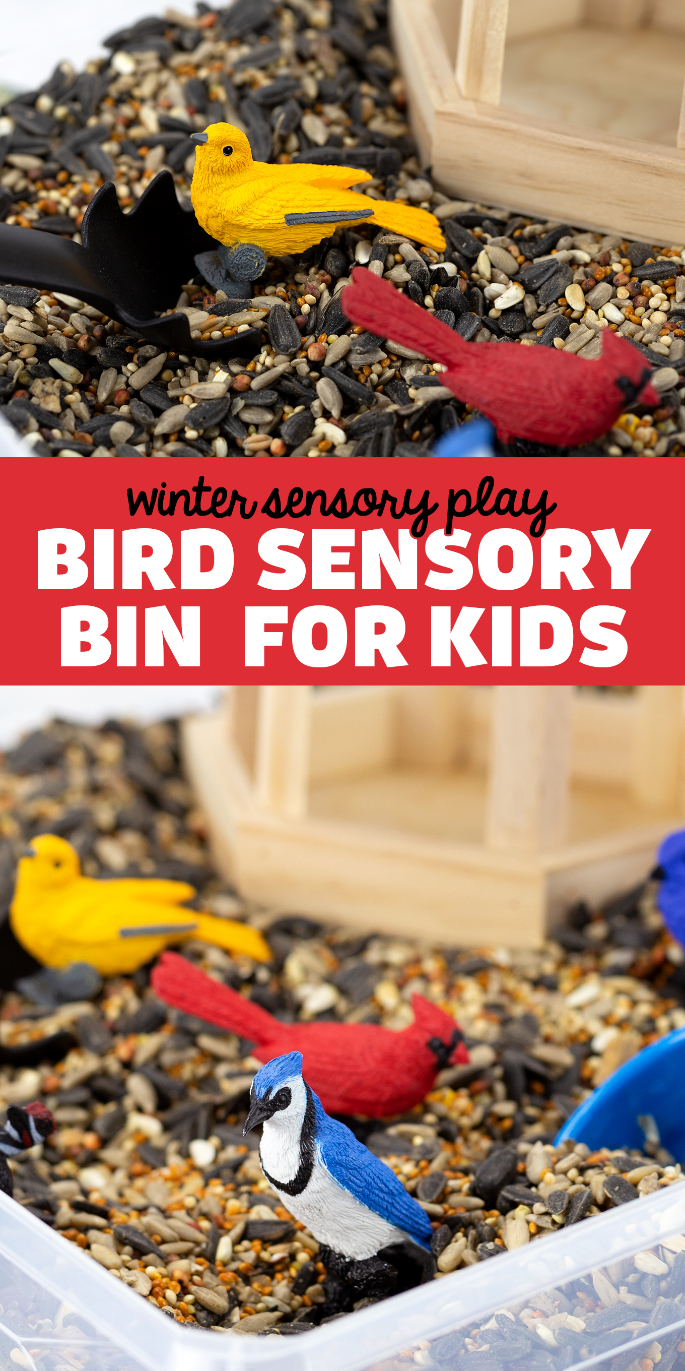 Learn about birds and invite sensory exploration with this fun Bird Sensory Bin for kids. Pair it with bird-themed preschool activities, books, and crafts. Follow us on Pinterest for more sensory bin ideas for kids! via @firefliesandmudpies