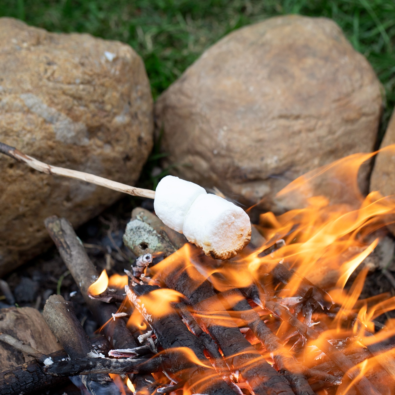 Roasting S'mores Over a Campfire