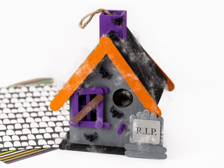 Haunted Birdhouse