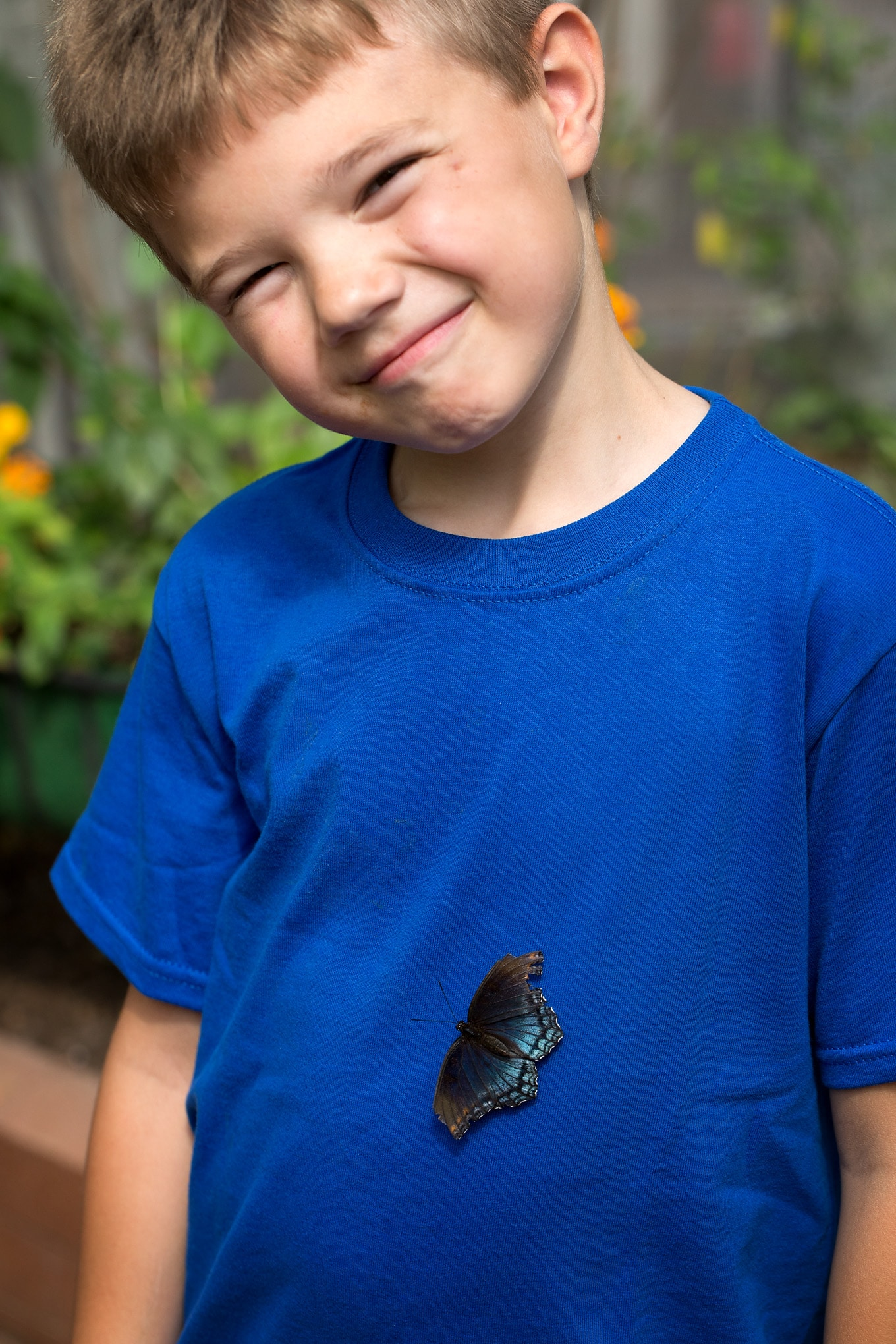 Child With Butterfly On His Shirt