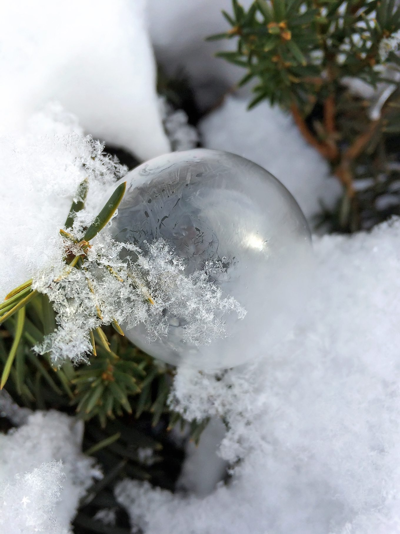 Single Frozen Bubble in Snow