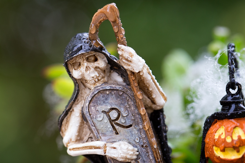 Halloween Teacup Garden Skeleton