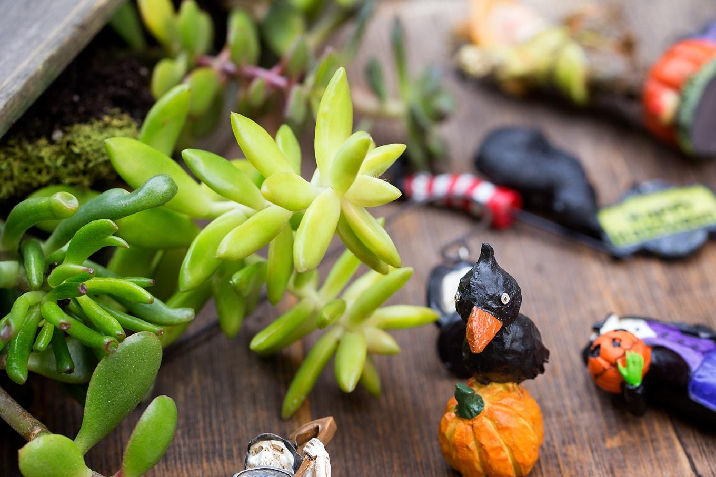 Halloween Teacup Garden Accessories