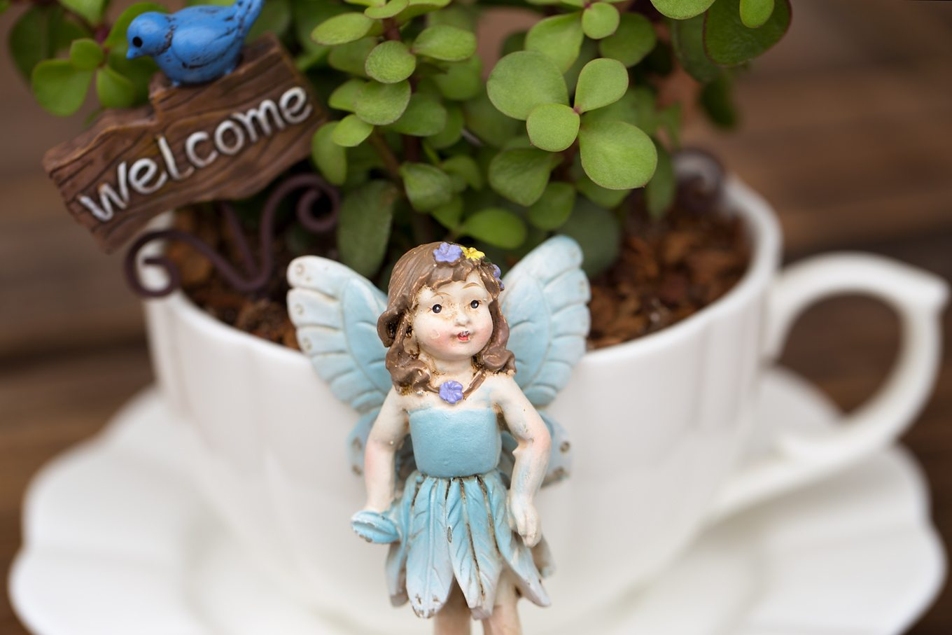 Bring the magic of fairies inside your home with a miniature teacup fairy garden. Perfect for Mother's Day, birthday parties, and sunny windows!