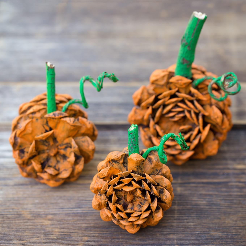 Rustic Pine Cone Pumpkins