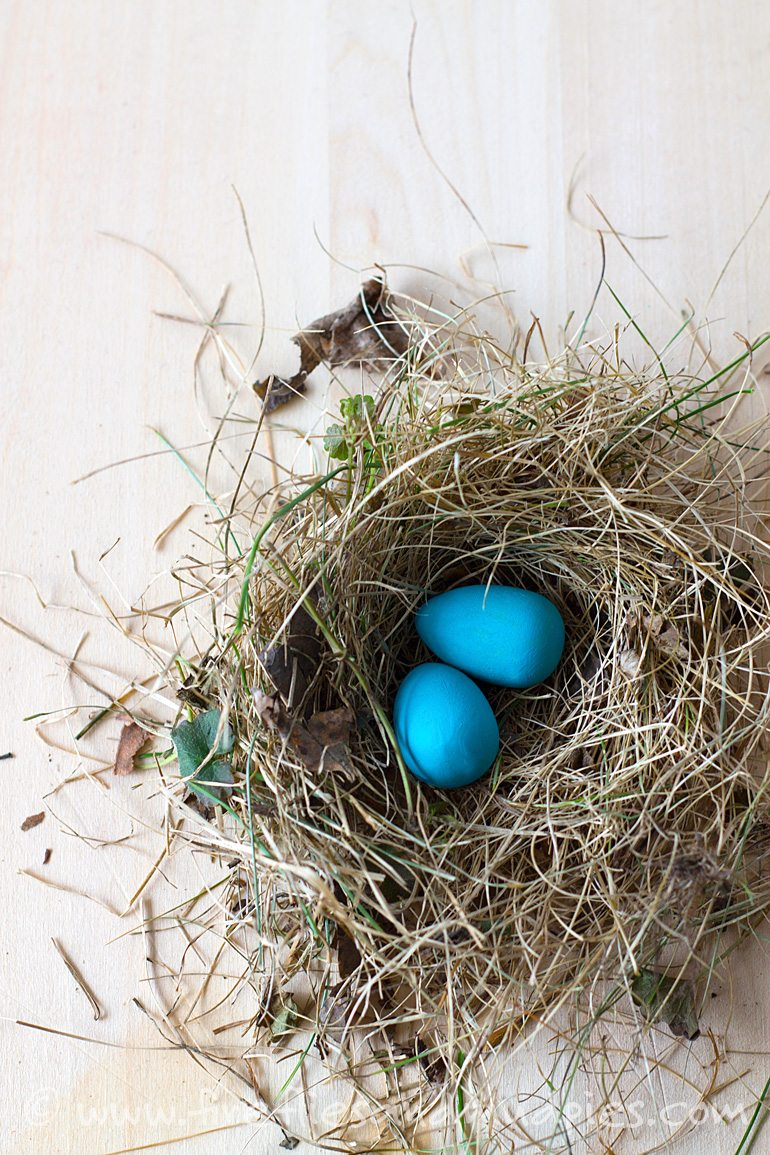 Painted Robin's Eggs | Fireflies and Mud Pies