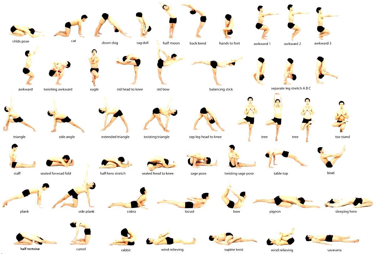 Beginner Vinyasa Yoga Poses Pdf