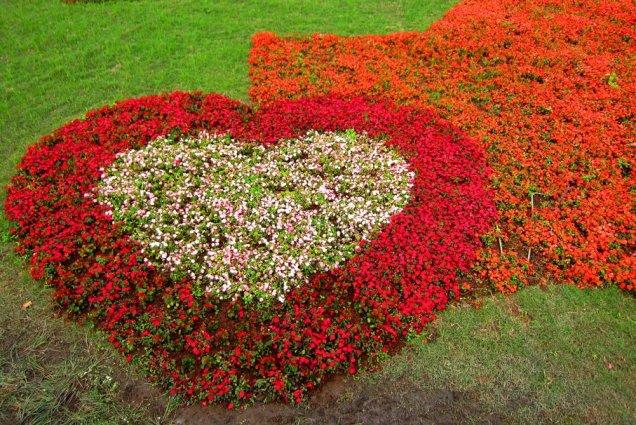 Have A Heart In The Garden Flea Market Gardening