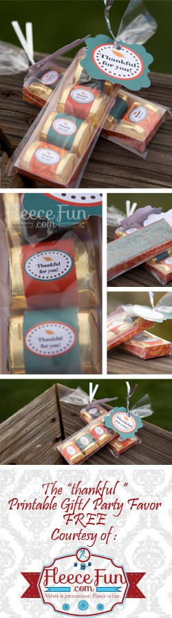 I love this cute Thanksgiving gift idea.  What a great DIY hostess gift.