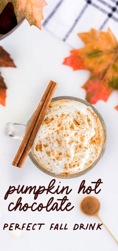 This Pumpkin Hot Chocolate recipe is the perfect addition to a cool autumn evening.  Easy to make! just dump all the ingredients into a crock pot! #recipe #pumpkin #fallrecipe #hotdrink