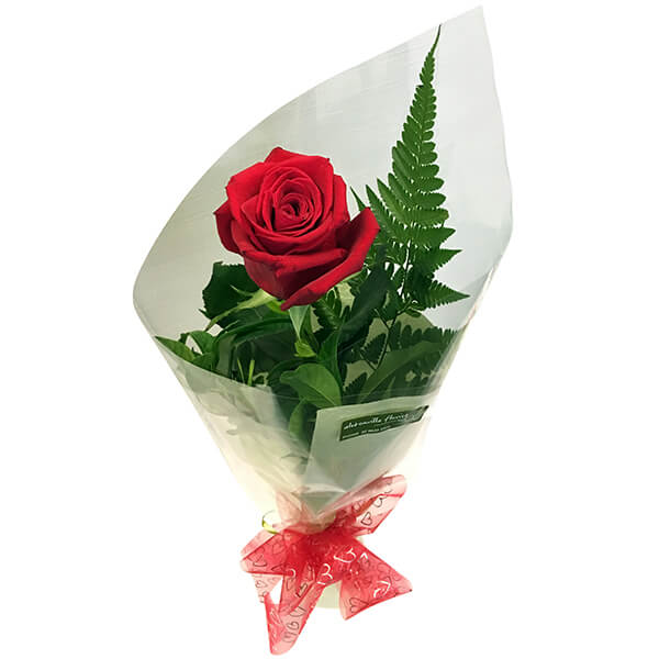Single Rose Wrapped Cellophane