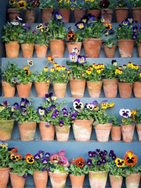 Tiny Clay Flower Pots