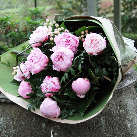 Peonies Sydney Delivery   Pink Peony   Flowers for Everyone Peony Rose Bouquet