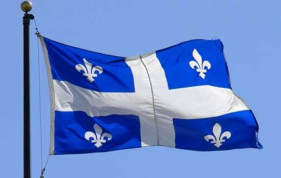 Blue Flag With Fleur De Lis
