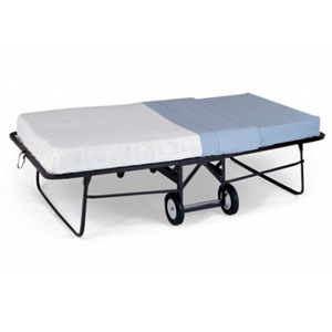 Queen Rollaway Bed With Mattress Furniture Table Styles