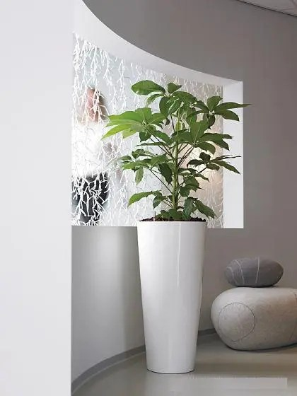 Tall Planters White
