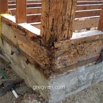 Corner Floor Joist Termite Damage Framing Repairs