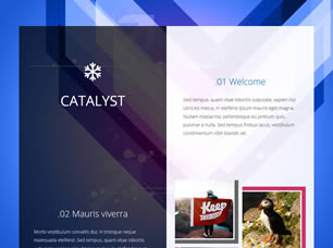 Download 2772 Free Website Templates   CSS   HTML   Free CSS     Catalyst Catalyst Free Website Template