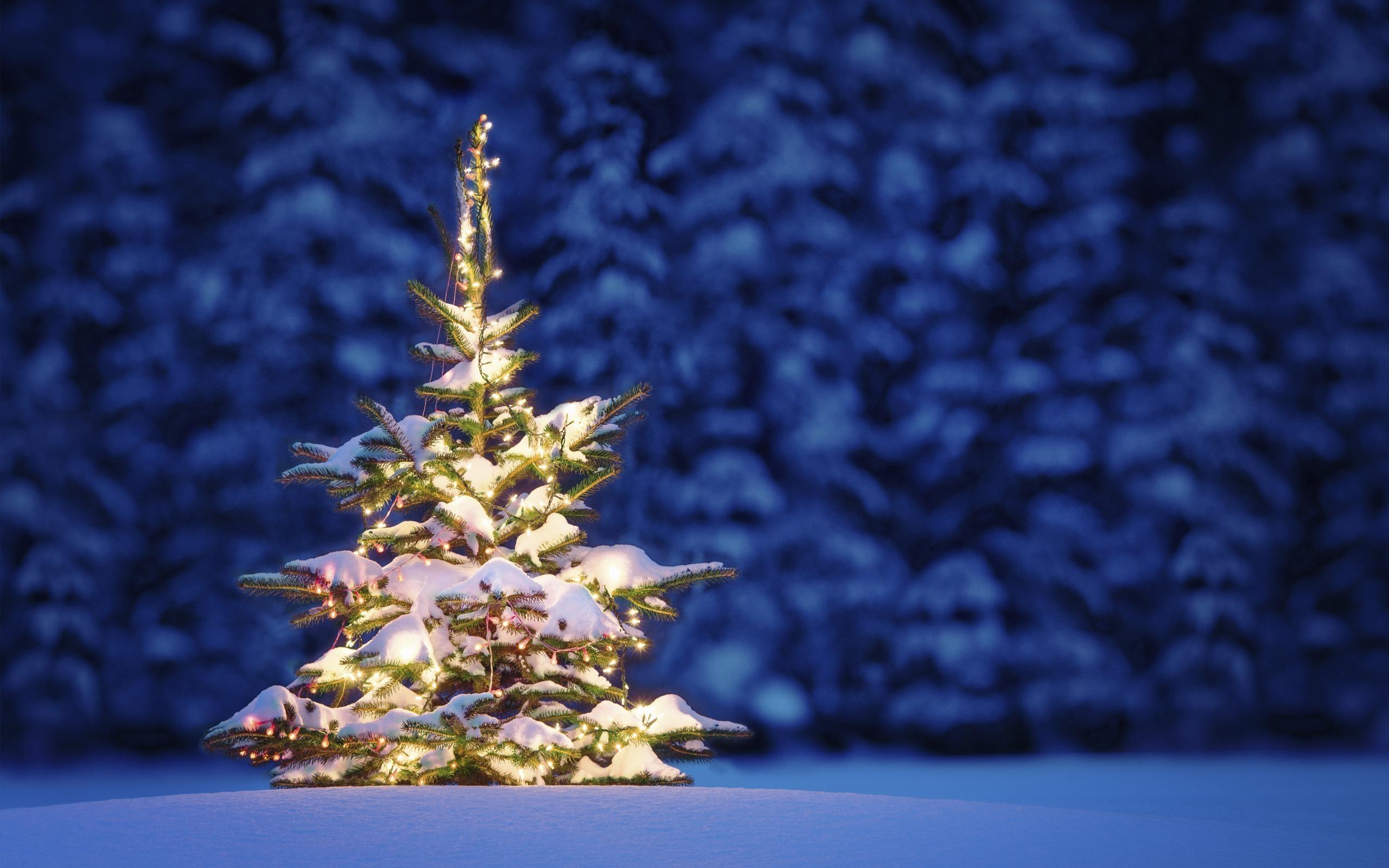 Winter Clip Art Snowflake