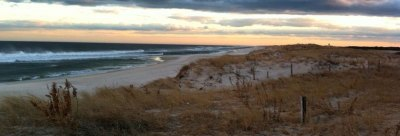 Friends of Island Beach State Park – Enhance interpretive ...