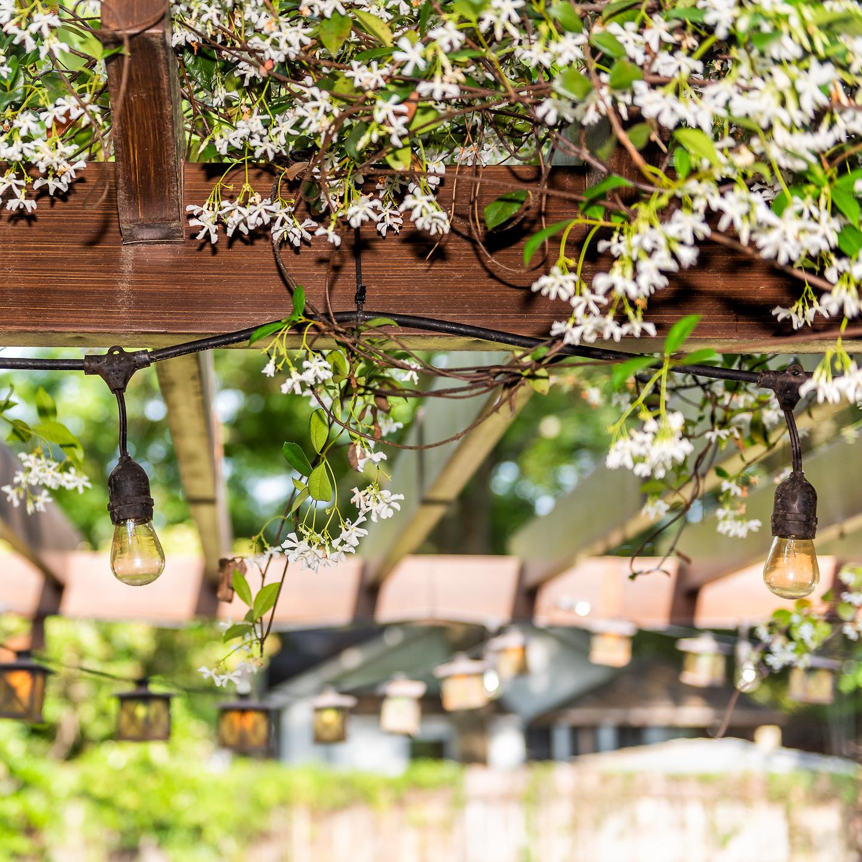 Outdoor Pergola Lighting Ideas Gardening From House To