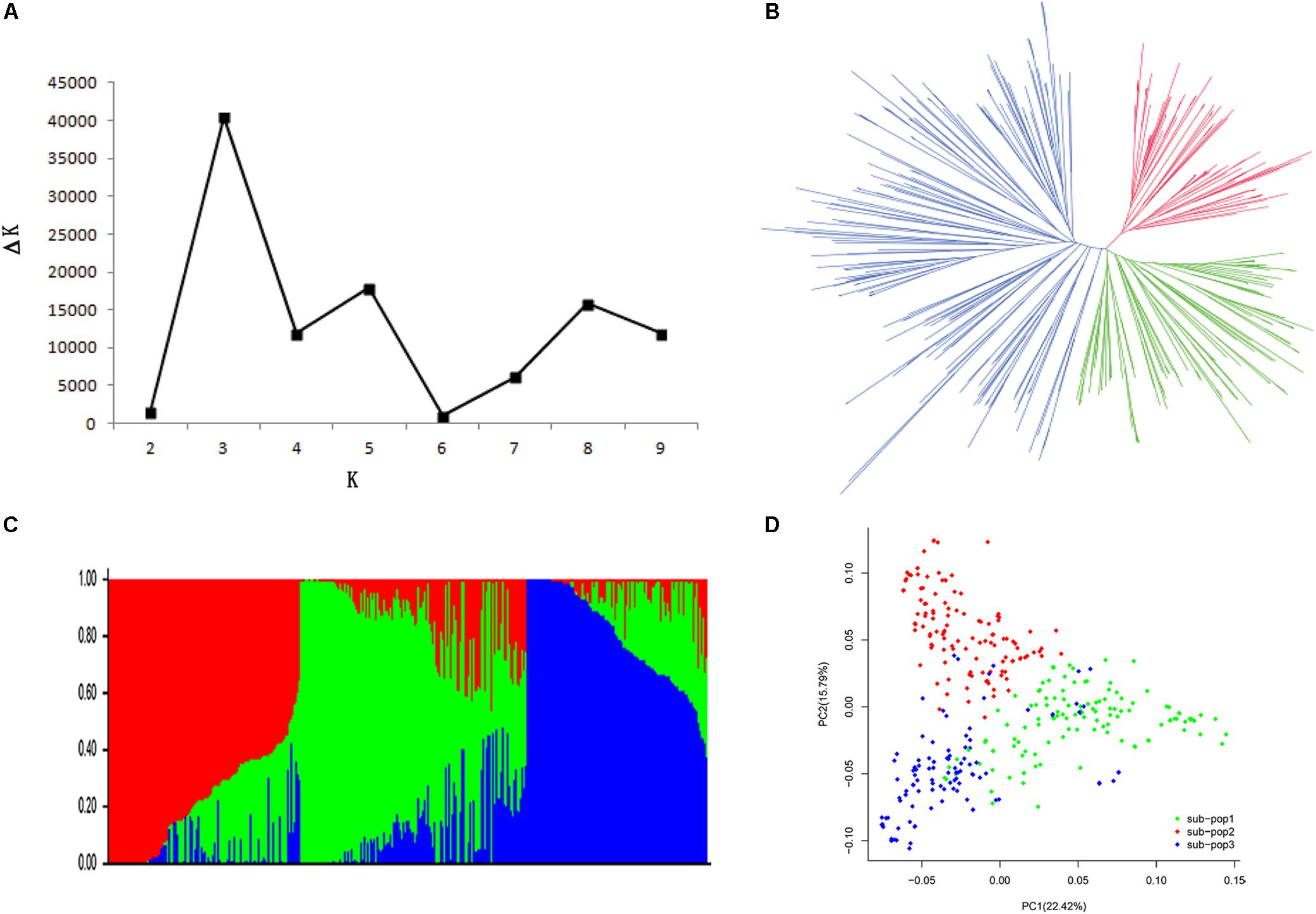 Frontiers Genome Wide Association Studies For Dynamic