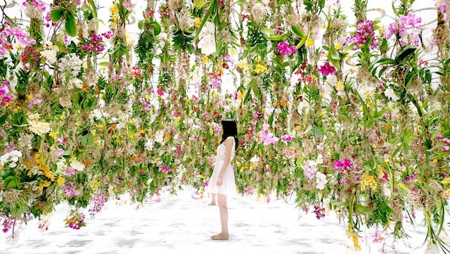 Floating Flowers Garden in Tokyo     Fubiz Media     suspended flowers  located in Tokyo  The suspensions are controlled  from a distance in order to be able to elevate or drop them to the visitors