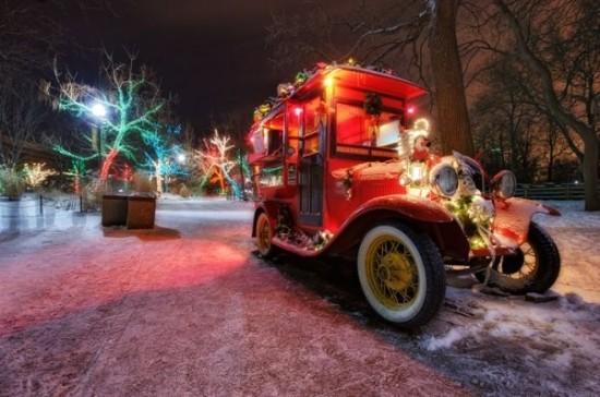 Montgomery Zoo Christmas Lights