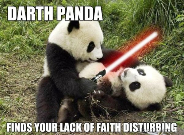 80 Cute Panda Memes