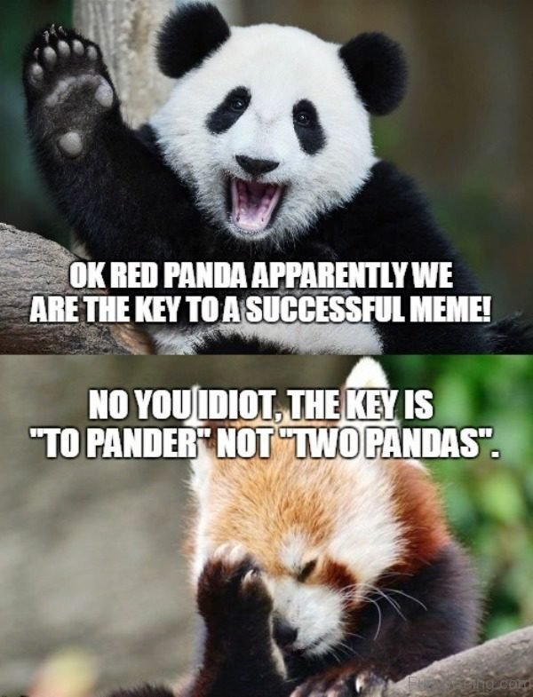 Panda Without Makeup Meme - Mugeek Vidalondon