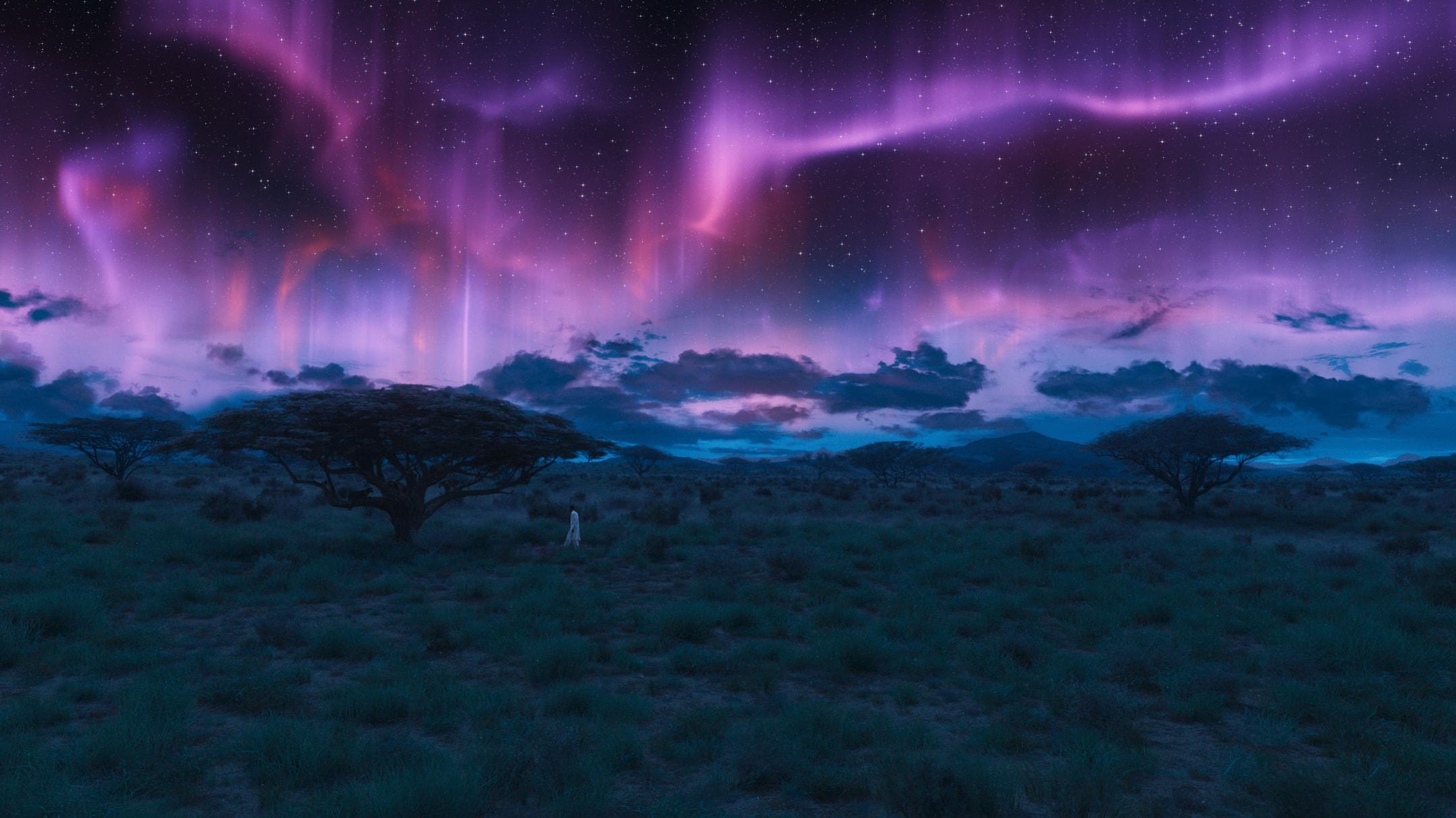 Northern Lights Cast