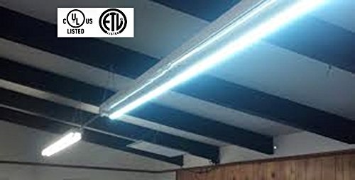 Flourescent Shop Light Fixtures