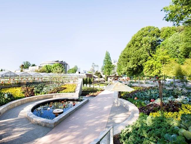 Edibles At The Atlanta Botanical Garden Garden Design
