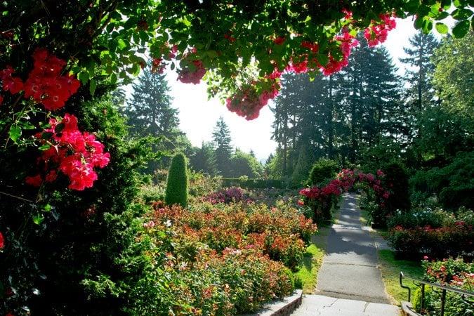 Best Native Garden Design