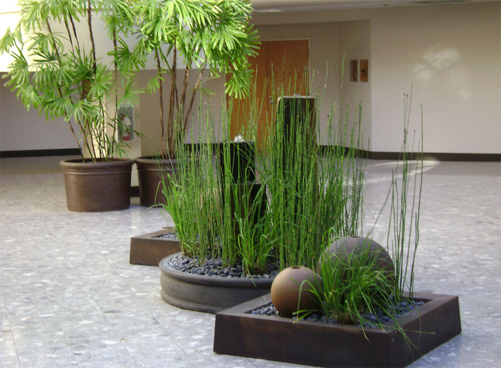 Interior Plant Design   Maintenance     Gardeners  Guild SF Bay Area     Interior management of plants in an atrium in building in Larkspur
