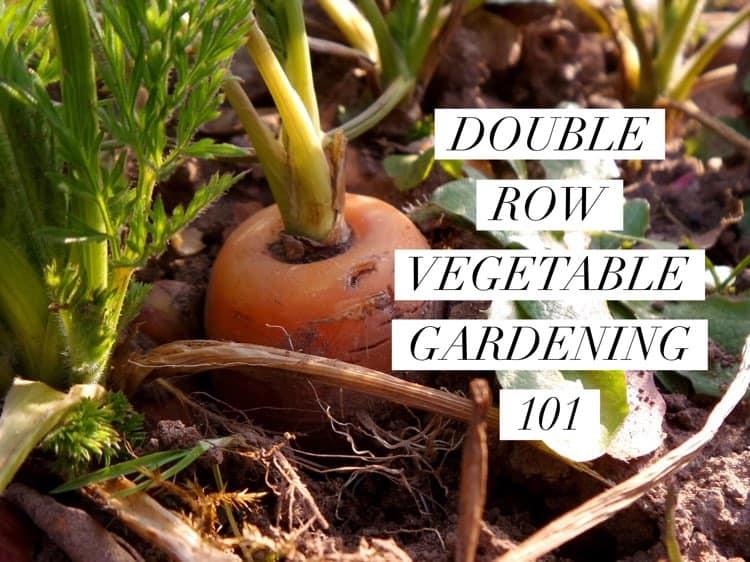 Square Foot Gardening Soil